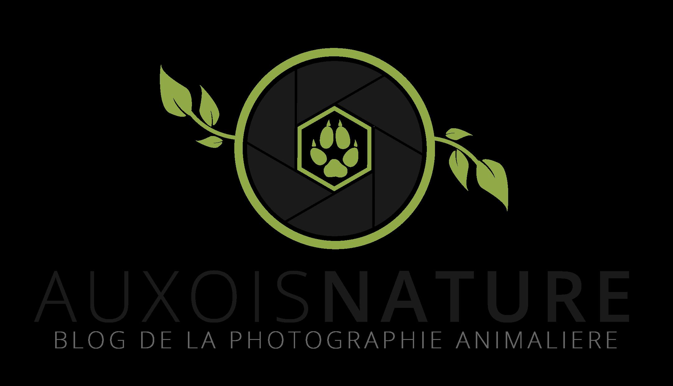 Auxois Nature - Le Blog de la photographie animalière - Régis Moscardini