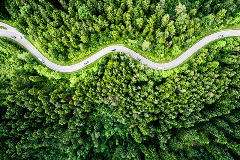Paysage-Nature - Top 10 N°2 - Playoffs de la Photo 2020