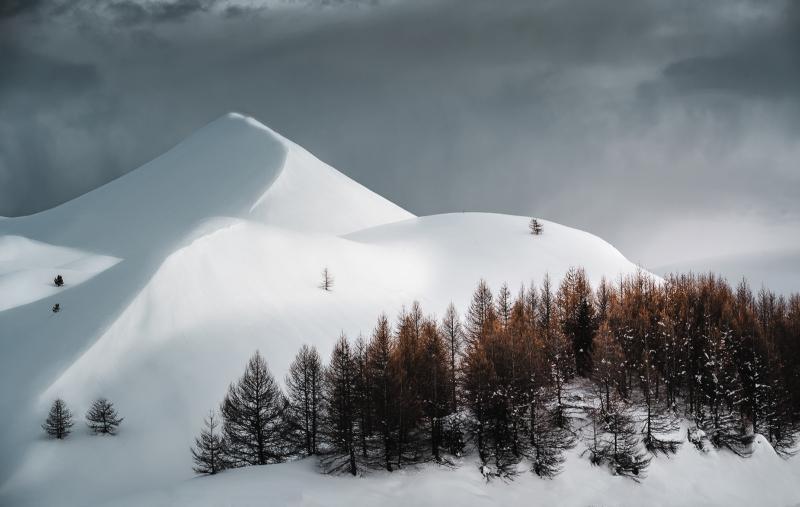 Paysage-Nature - Top 10 N°6 - Playoffs de la Photo 2020