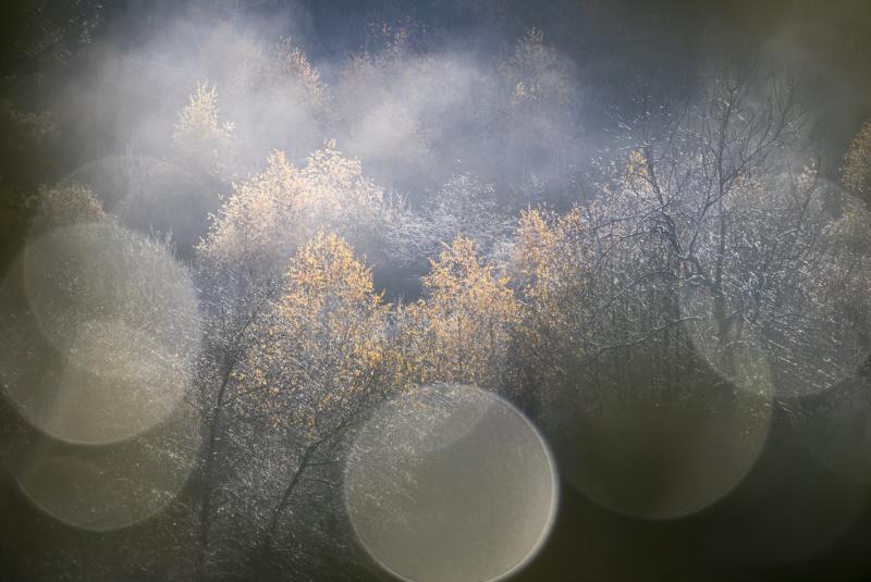 Paysage-Nature - Top 10 N°9 - Playoffs de la Photo 2020
