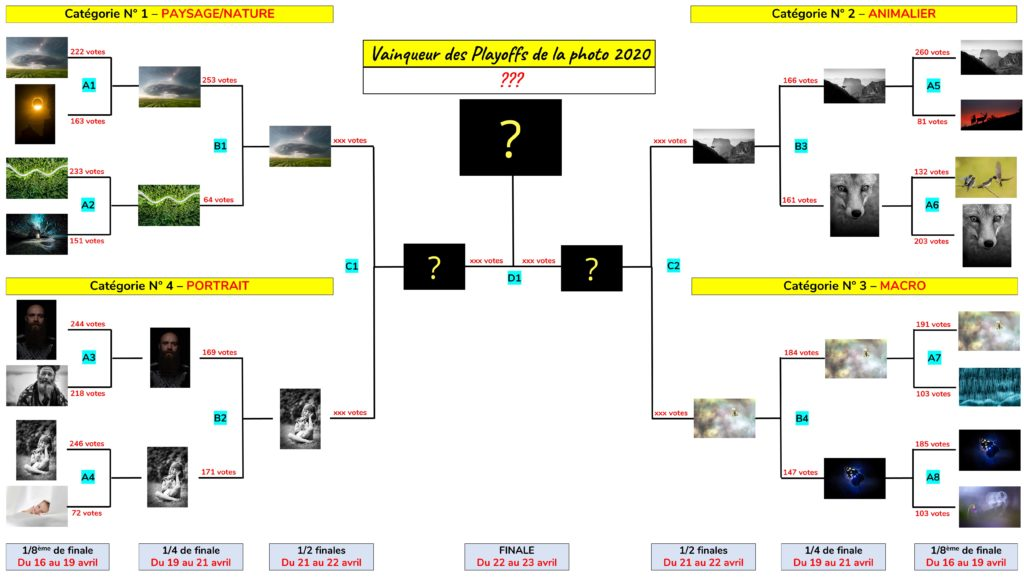 Playoffs de la Photo 2020 - Tableau de la phase finale - Concours photo