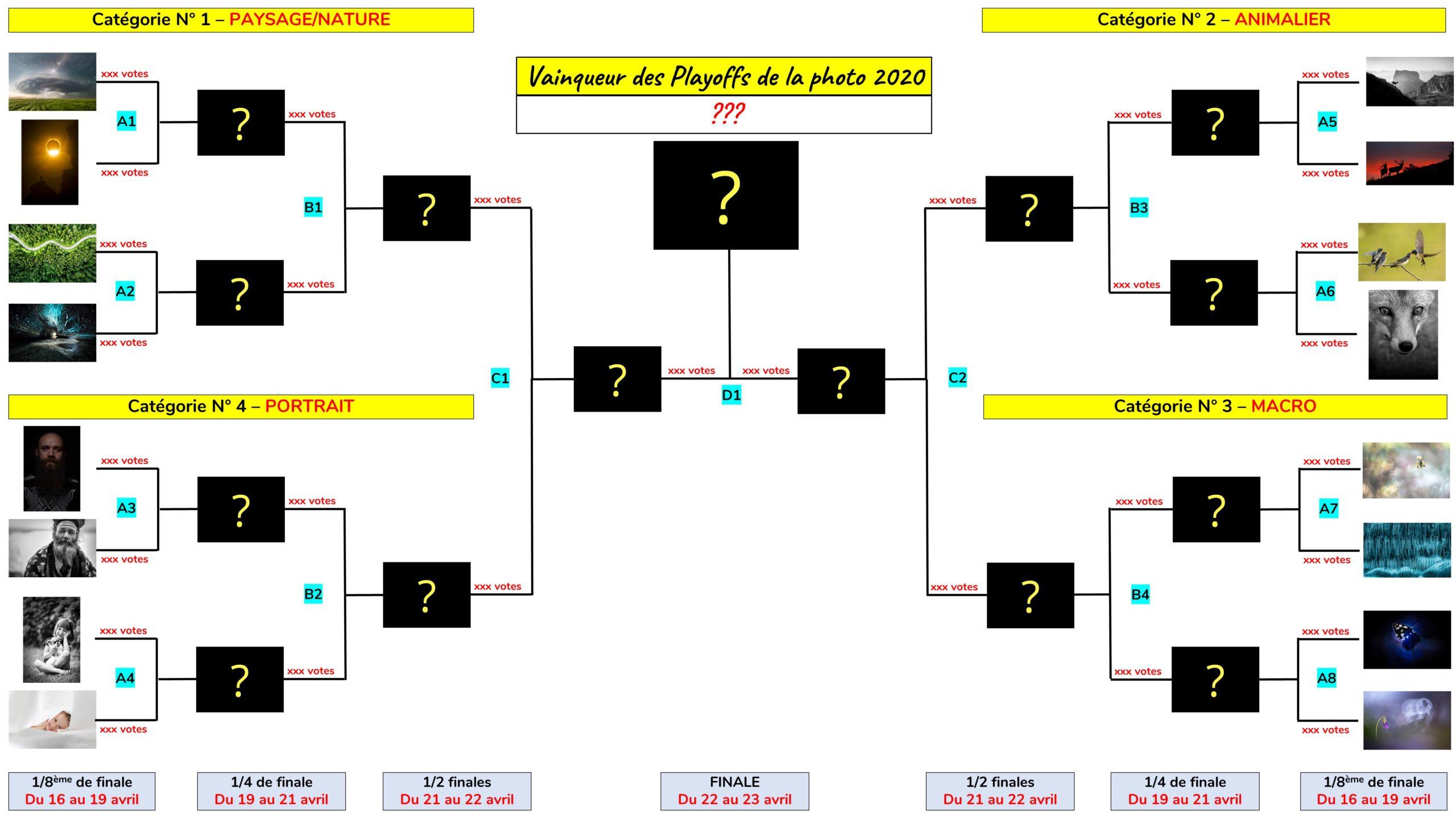 Playoffs de la Photo 2020 - Tableau de la phase finale - Concours photo